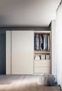 Wardrobe interiors with clothes rail, shelf and inbuilt chest of drawers